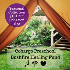 Cobargo Preschool Bushfire Healing Fund-2