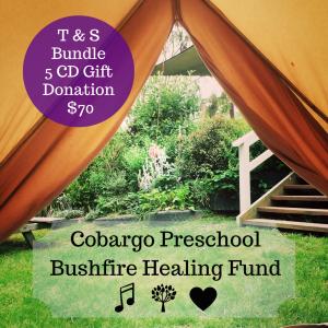 Cobargo Preschool Bushfire Healing Fund-1